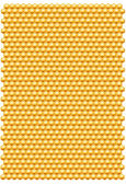 Bee honeycombs pattern — Stock Photo