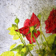 Floral Background - Stock fotografie