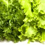 Mixed Salad — Stock Photo #4783211
