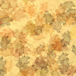 Maple Leaves — Stock Photo #4862970