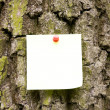 Stock Photo: Note On Tree