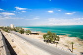 Dead Sea. Israel — Stock Photo