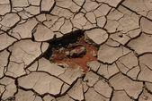 ölü vlei delik — Stok fotoğraf