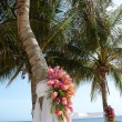 Tropical wedding — Stock Photo #5236536