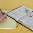 NIV Study Bible — Stock Photo