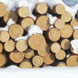 Pile of logs at sawmill — Stock Photo