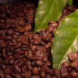 Stock Photo: Coffee beand leaves