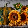 Stock Photo: Still life with pumpkin and sunflowers