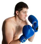 Boxer — Stock Photo