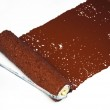 Brown paint roller — Stock Photo
