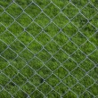Royalty-Free Stock Photo: Chain Link Fence with grass background