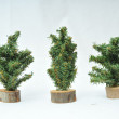 Stock Photo: Miniature plastic christmas tree figures