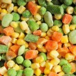 Frozen Frosty Vegetables — 图库照片