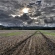Tire Tracks Trail Dug Into Cultivated Farm Land Field — Stock Photo