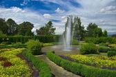 Garden with fountain — Foto Stock