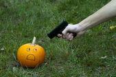 Shooting pumpkins — Stock Photo