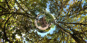 360 Little Planet — Stock Photo