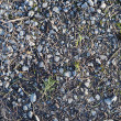 Royalty-Free Stock Photo: Rocks texture