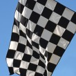 Racing Flag — Stock fotografie #4632356