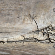 Cracked wood texture — Stock Photo #4639076