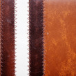 Leather Stripe — Stock Photo