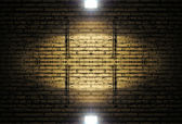 Brick wall with spotlight — Zdjęcie stockowe