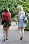 Studenten, die zu fuß vor schule — Stockfoto
