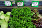Lettuce on sale at shopping market store — Stock Photo