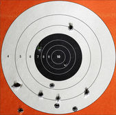 Practice Target with Bullet Holes — Stock Photo