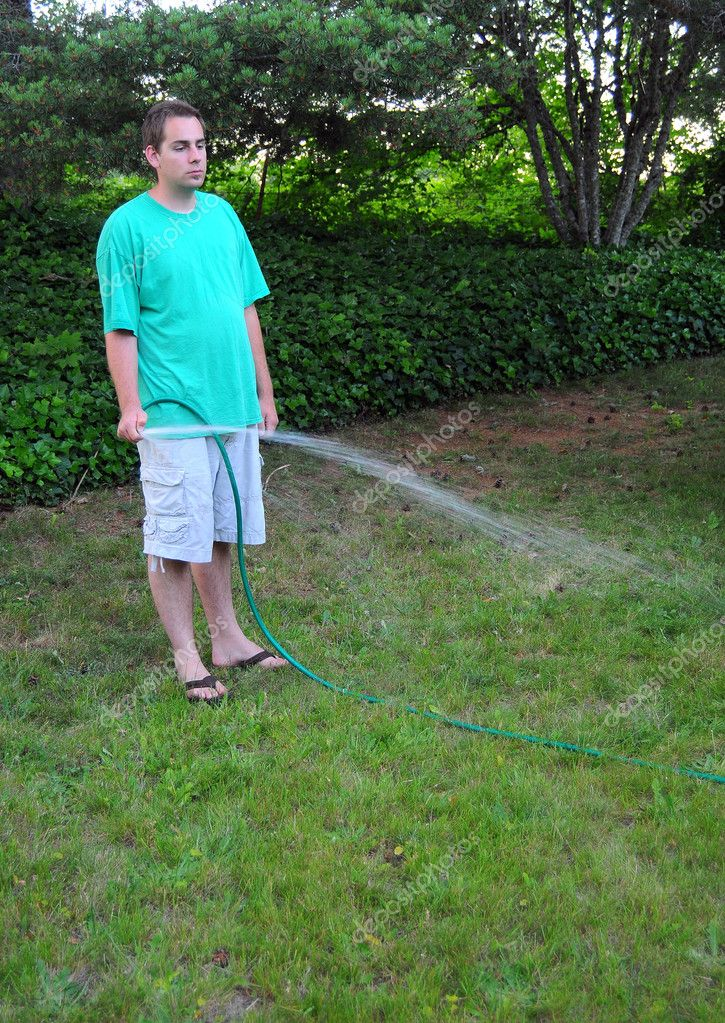 Man Watering His Grass Lawn With A Hose Stock Photo