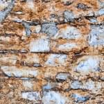 Colorful Brick Wall Texture — Stock Photo #4646899