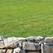 Stone wall with Grass — Stock Photo #4647096
