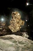 Duża bryłka złota — Zdjęcie stockowe