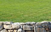 Muro de pedra com grama — Foto Stock