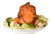 Chicken cooked in the oven — Stock Photo