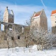 Burg in Nassenfels — Stock Photo