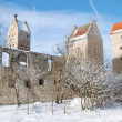 Stock Photo: Burg in Nassenfels