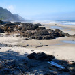 Strand mit Felsen in Oregon - USA - Stock Photo