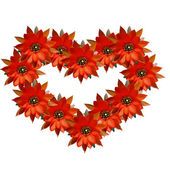 Heart of red flowers — Stock Photo