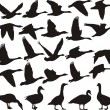 Geese black silhouette — Stock Vector