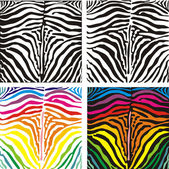 Vector background skin zebra — Stock Vector