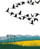Migrating geese in the spring — Stock Vector
