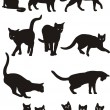 Cats vector — Stock Vector #4668443