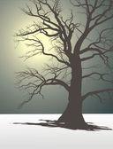 Arbre dans le brouillard de l'hiver — Vecteur