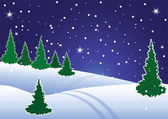 Winter fir tree forest at night — Stock Vector