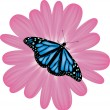 Vector butterfly on pink flower — Stock Vector #5371659