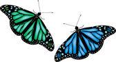 Beyaz arka plan üzerinde renkli kelebekler — Stok Vektör