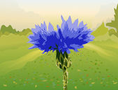 Landscape with a flower a cornflower — Stock Vector