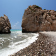 Постер, плакат: Seashore and rocks