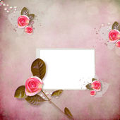 Pink background with roses and frame — Stock Photo